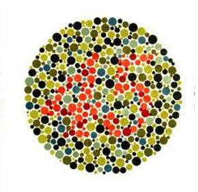 Renk Körlüğü Testi 5